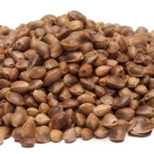 Where to find Hemp seeds online